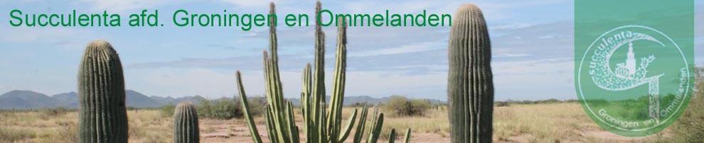 Cactusvereniging Succulenta